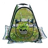 AHOME - Miniinvernadero portátil, transparente, de efecto invernadero PVC, 70 x 70 x 80 cm