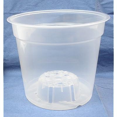 Clear Plastic Pot for Orchids 6 inch Diameter - Quantity 5: Garden & Outdoor
