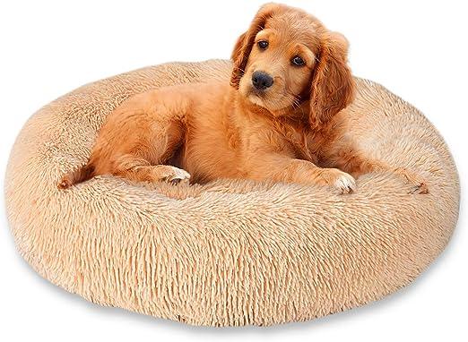 Cozywind Cama para Perros y Gatos,Mascotas Calentito Cojín Redondo Suave de Felpa (70cm, Marrón Claro): Amazon.es: Productos para mascotas