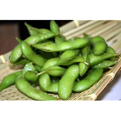 Bean Seeds, edamame, Edible Soybean, Organic Non-gmo, 200 Untreated Seed : Garden & Outdoor