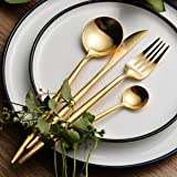 LEKOCH 4-Piece Stainless Steel Flatware Set Including Fork Spoons Knife Tableware (Golden)