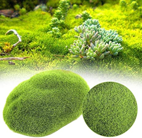 Jeffergarden 5 Piezas jardín decoración Bricolaje simulación Musgo Piedra Musgo Artificial césped(S): Amazon.es: Hogar