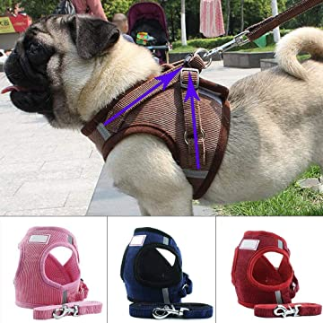 Serwell Pet Dog Adjustable Soft Harness with Leash Set Pet Vest Pet Supplies