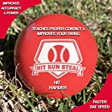 Hit Run Steal Weighted Practice Balls for
