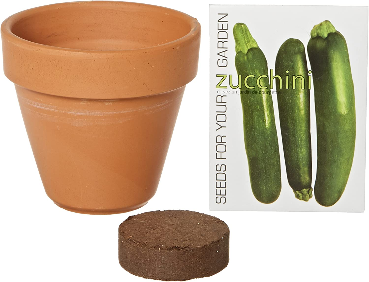 S.F. Imports GB-ZUCCHINI/MD Grow Your Own Medium Vegetable Kit, Zucchini