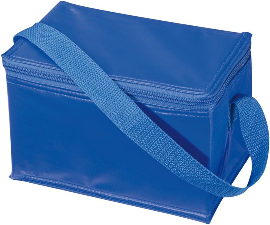 Cooler Bag thermal insulated freezer carrier Blue 19 litre Carry bag