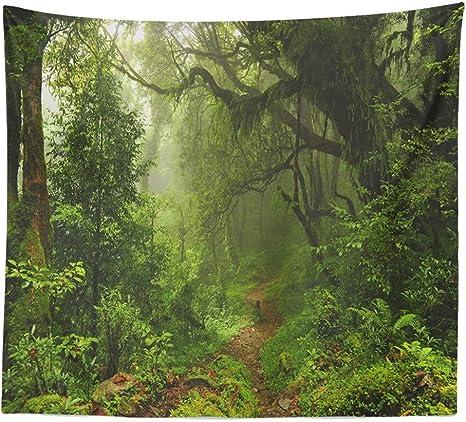 charmsamx Tapiz para Colgar en la Pared, diseño de Bosque neblinoso: Amazon.es: Deportes y aire libre