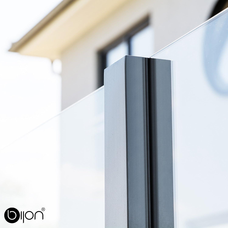 Bijon Glassichtschutz Pfosten 90 1250mm Profil 70x70x2mm