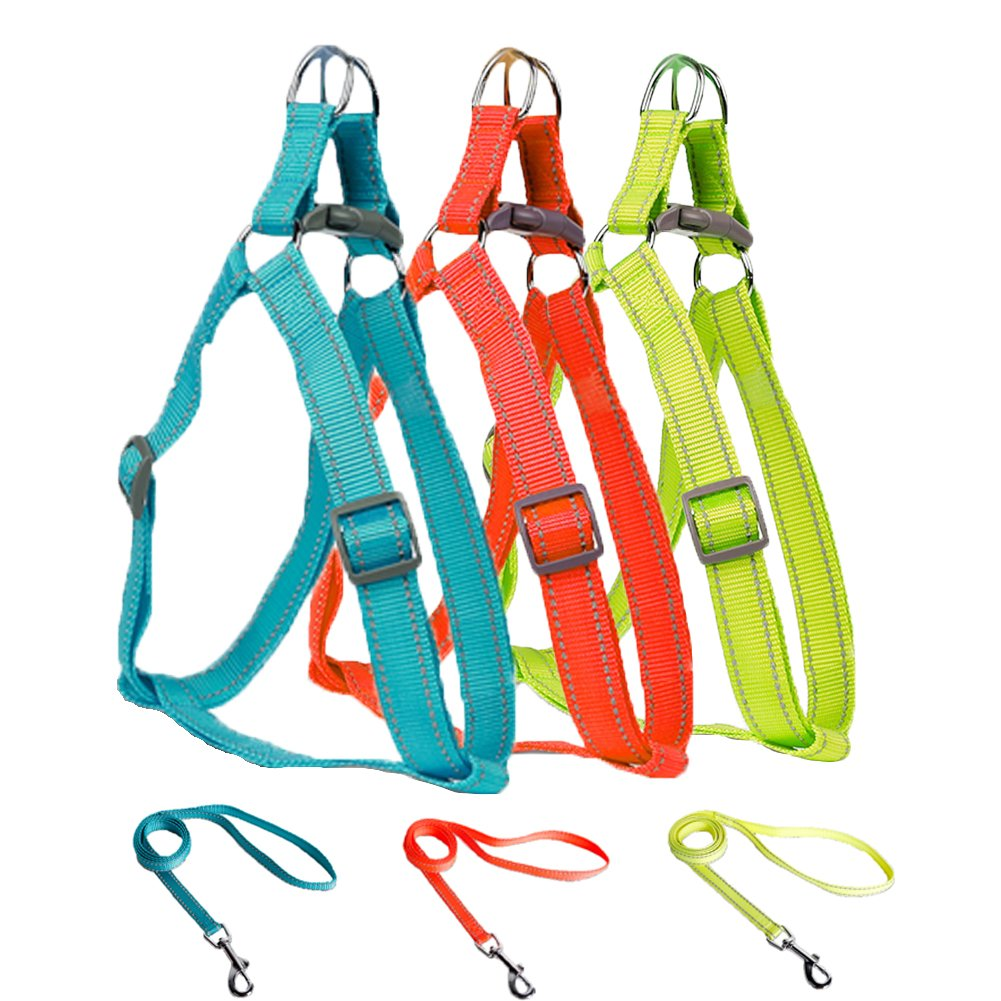 LittleTail Reflective Adjustable Dog Harness Colourful Nylon Pet Outdoor Training Matching Leash for Small Medium Large X-Large Size by LittleTail
