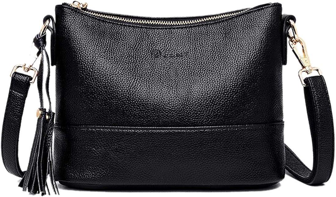 Alovhad Crossbody Bag Purse Luxury Shoulder Handbag Bags for Women With Tassel
