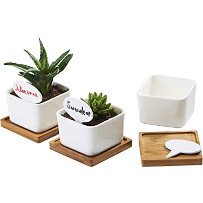 FLOWERPLUS Planter Pots Indoor, 3 Pack 3.4 Inch White Ceramic Small Square Succulent Cactus Flower Plant Pot with Bamboo Tray and Little Plants Signs for Indoors Outdoor Home Garden Kitchen Decor: Garden & Outdoor