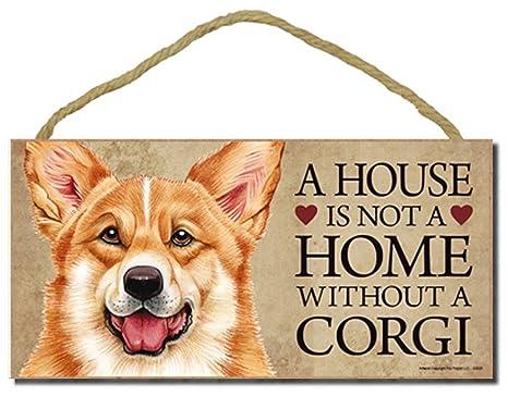 Amazon.com: Corgi