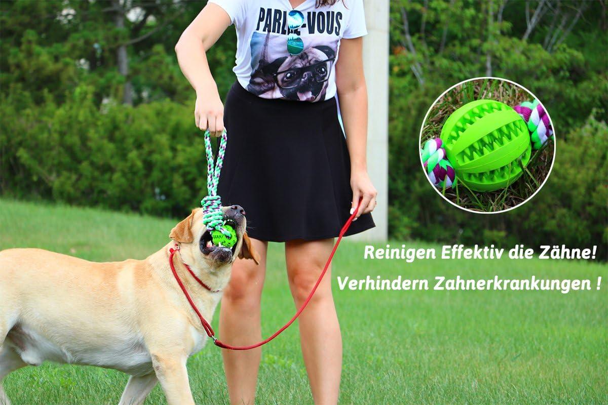 tailmate Juguete de pelota con cuerda para perros, con bola de ...