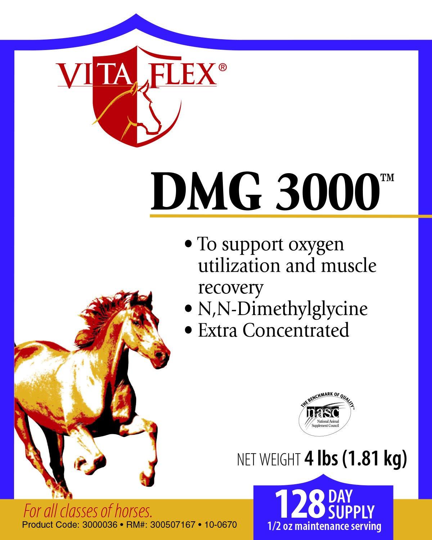 Vita Flex DMG 3000 Concentrate, 128 Day Supply, 4 lbs 2