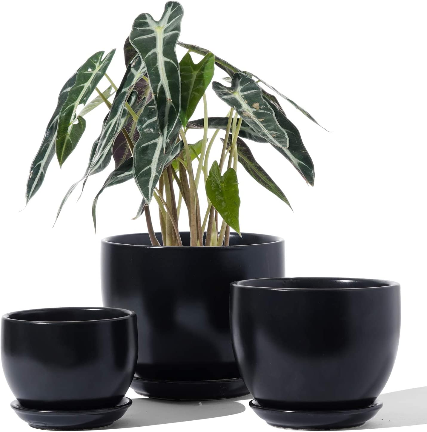 LE TAUCI Indoor Plant Pot, 6.3+5.3+4.3 Inch Ceramic Planter Pots with Drainage Hole and Saucer, Small to Large Sized, Flower Pot for Indoor Garden Decor, Set of 3, Black (Plants not Included)