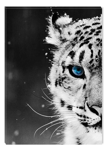 Not Framed Canvas Print Home Decor Wall Art Picture art,leopard eyes