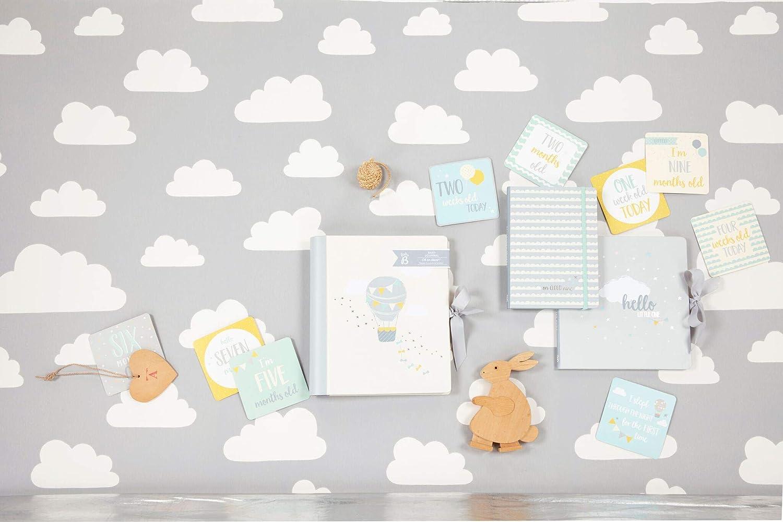 idioma espa/ñol no garantizado Diario de beb/é ilustrado Busy B /«Baby B/» Pack de 24/tarjetas