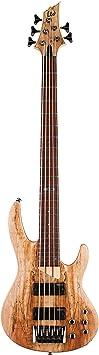 ESP LTD B-205SM Bass Guitar