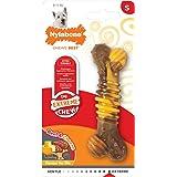 Nylabone Flavor Frenzy Regular Dura Chew Cheesesteak Flavored Bone Dog Chew Toy
