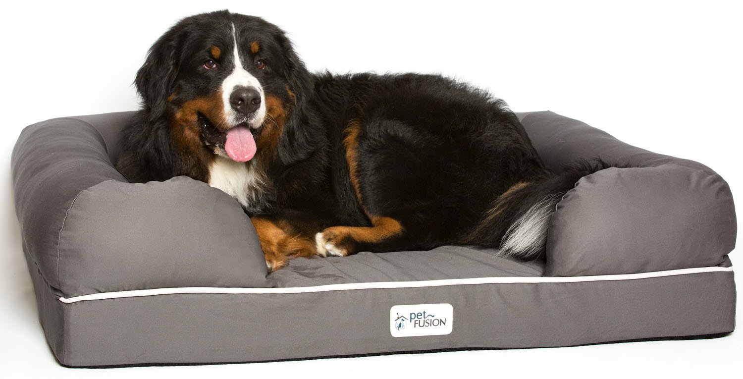 PetFusion Ultimate Solid 4'' WATERPROOF Memory Foam Dog Bed for X Large Dogs (44x34x10'' orthopedic mattress; Gray). Replacement covers & blankets also avail
