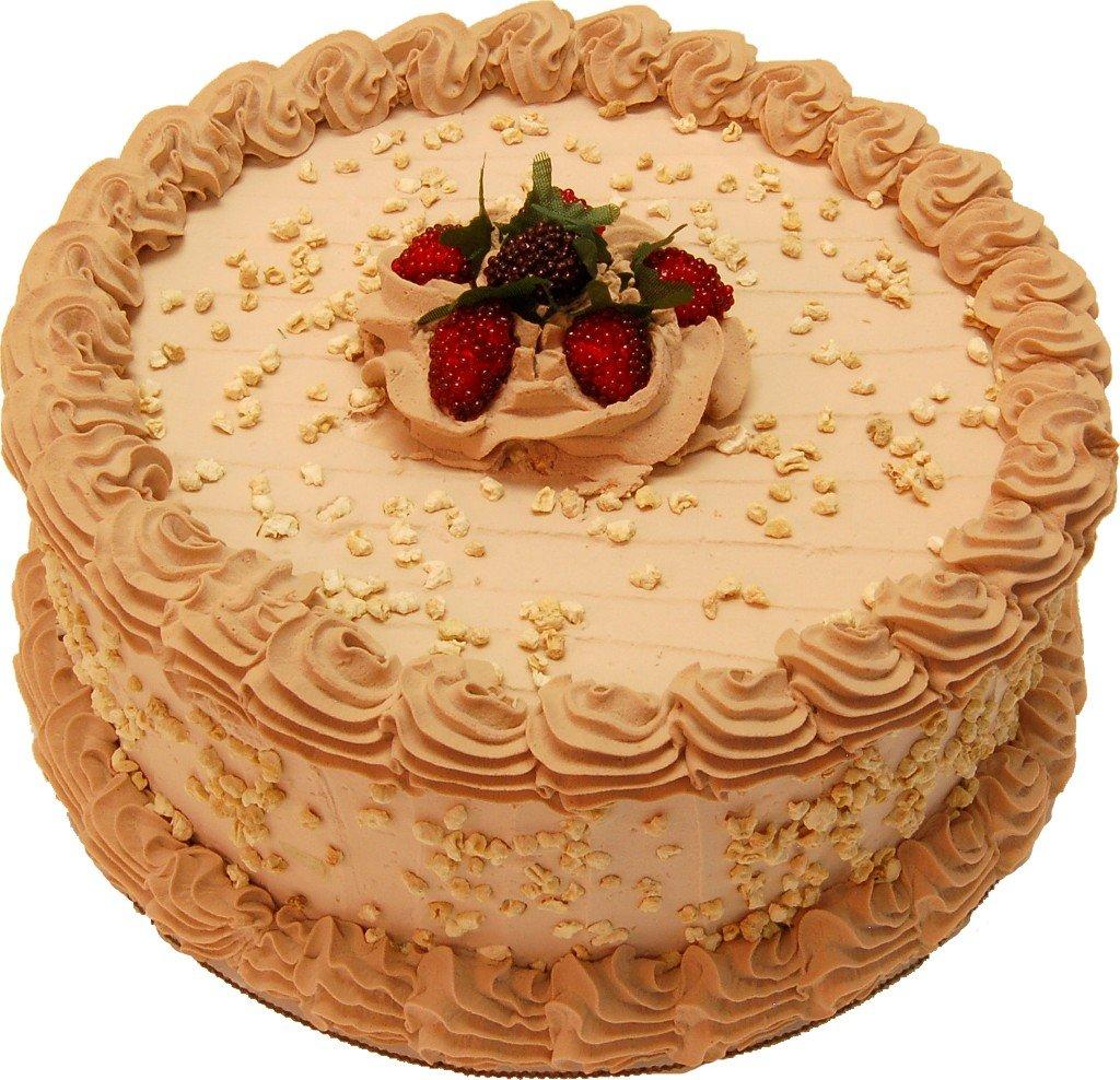 Amazon.com: Chocolate Cake Fake Food 9 Inch: Home & Kitchen