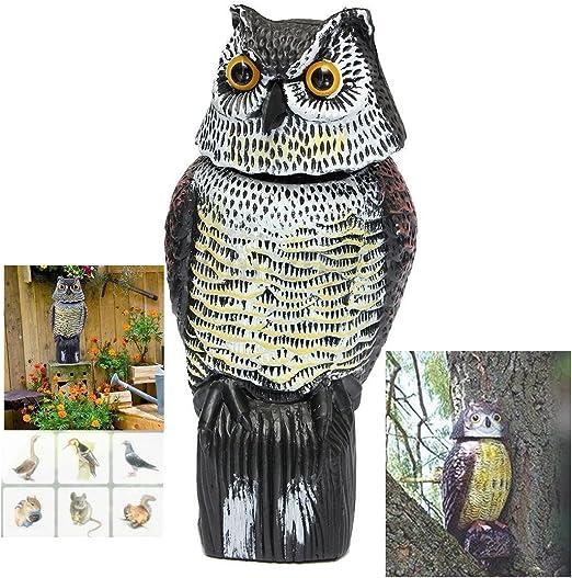 ishowstore búho jardín adorno de espantapájaros espantapájaros, señuelo disuasivo realista Buscando búhos: Amazon.es: Jardín