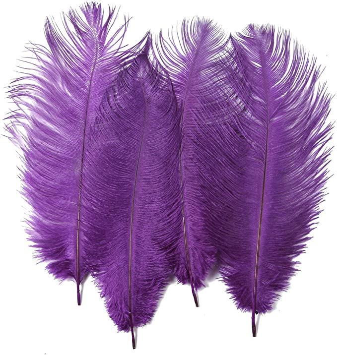 Hgshow 10pcs Feather 12-14 inch 30-35cm for Home Wedding Decoration Ostrich Feathers,Plume