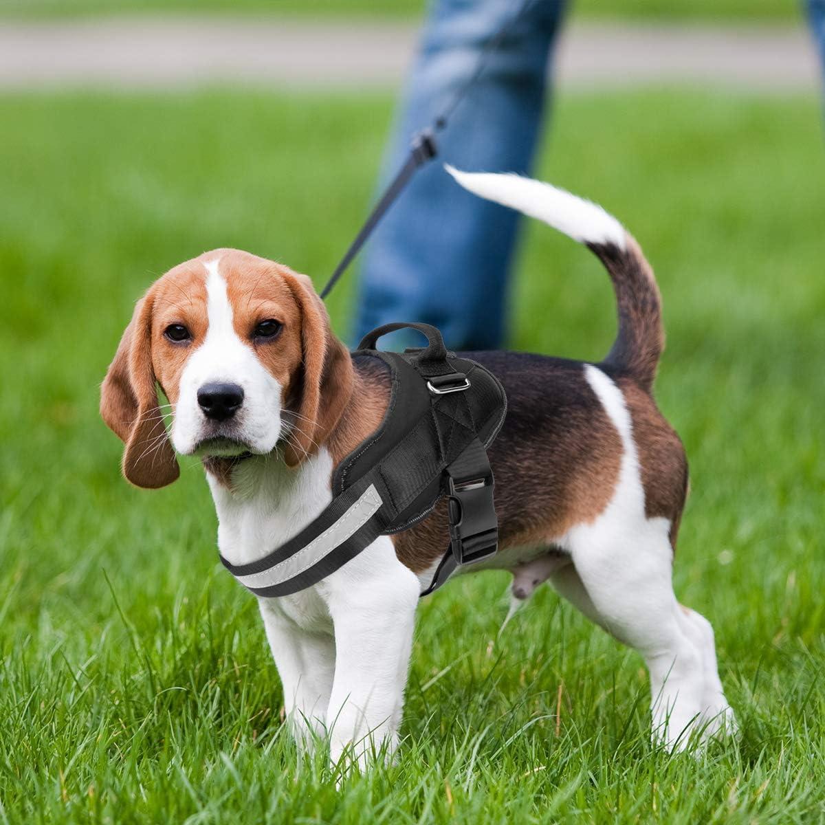 Noyal arnés ajustable para perro, arnés para perro sin tirar ...