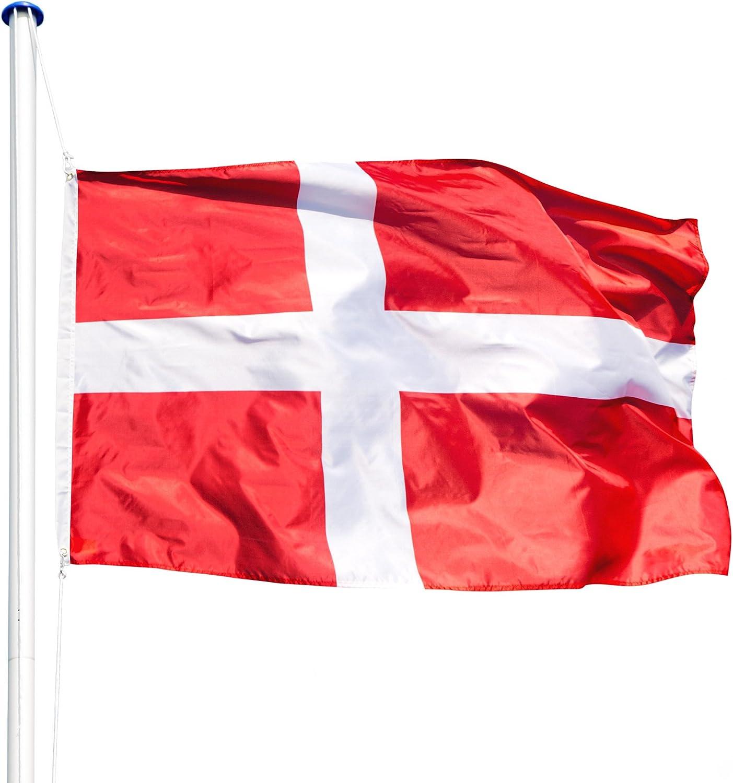 TecTake Mástil para Bandera 6,25 m con Bandera y Cuerda Palo asta Aluminio - Varios Modelos - (Dinamarca | no. 402853): Amazon.es: Hogar