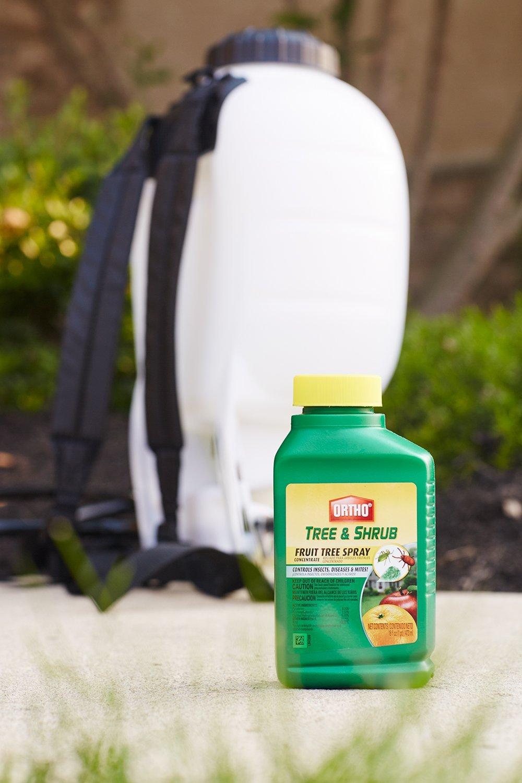 Fruit Tree Sprayers Part - 24: Amazon.com : Ortho Tree U0026 Shrub Fruit Tree Spray, 16-Ounce : Insect  Repellents : Patio, Lawn U0026 Garden