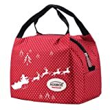 Aosbos Recycled Insulated Lunch Box Tote Cooler Bag