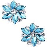 ElegantPark AJ Fashion Rhinestone Crystal Shoes Dress Decoration Shoe Clips 2 Pcs