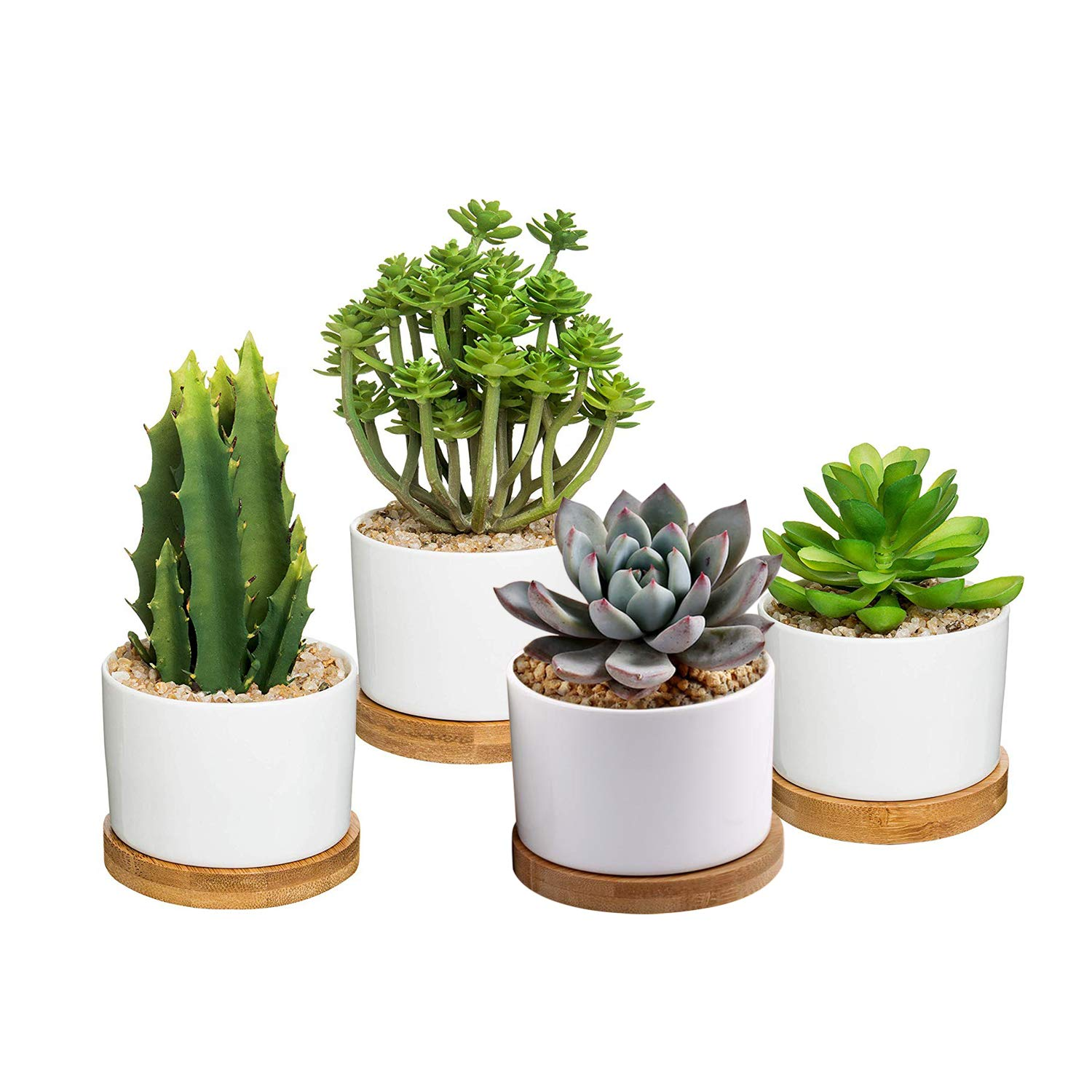UFIG Succulent Planter White Ceramic Cylinder Cactus Flower Pots with Removable Tray, Pack of 4