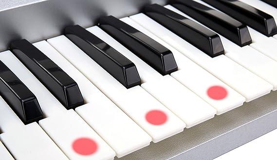 McGrey LK-5430 - Teclado de 54 teclas con teclas luminosas, micrófono y soporte para notas: Amazon.es: Instrumentos musicales