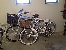 basil denton hundekorb f r fahrrad sport freizeit. Black Bedroom Furniture Sets. Home Design Ideas
