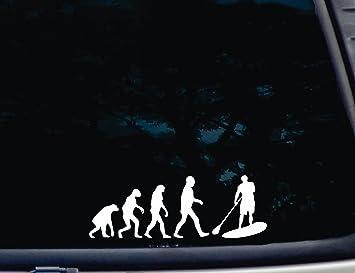 Amazon.com: La evolución de Sup – 8 1/2