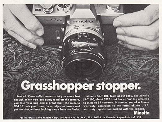 1000  images about Vintage Camera Collection on Pinterest