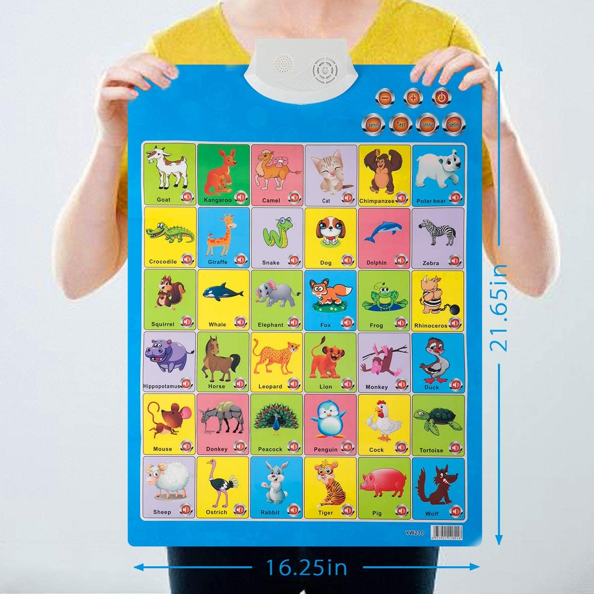 Interactive Smart Alphabet Poster Alphabet Electronic Wall Chart for Kids Toddlers Learning Educational Toys Ideal Gifts Fruits Alphabet Learning Biubee Talking Electronic Alphabet Poster