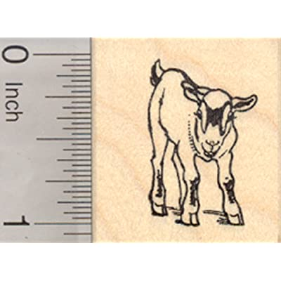 Pygmy Goat Rubber Stamp, Small: Arts, Crafts & Sewing