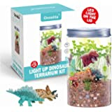 Onnetila Dinosaur Fairy Garden in a Jar Light up Terrarium Kit for Kids Plant Growing Kit Grow and Glow Terrarium STEM Educational Projects Boys and Girls Crafts for Kids Age 5, 6, 7, 8, 9 Year Old