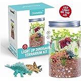 Onnetila Dinosaur Fairy Garden in a Jar Light up Terrarium Kit for Kids Plant Growing Kit Grow and Glow Terrarium STEM…