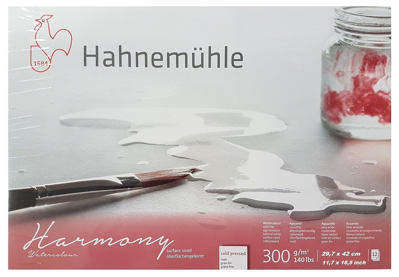 Hahnemuhle Watercolour Harmony Paper, 300 g/mq, 12 fogli grana fine (orizzontale) 29,7 x 42cm White Hahnemühle ESPACEBEAUXARTS