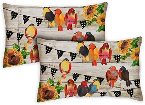 Toland Home Garden 731233 Farmhouse Birds 12 x 19 inch Indoor Outdoor, Pillow with Insert 2-Pack