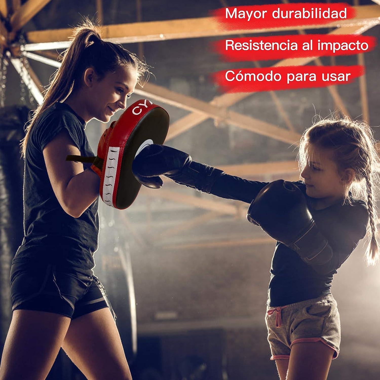 paos y escudos para boxear