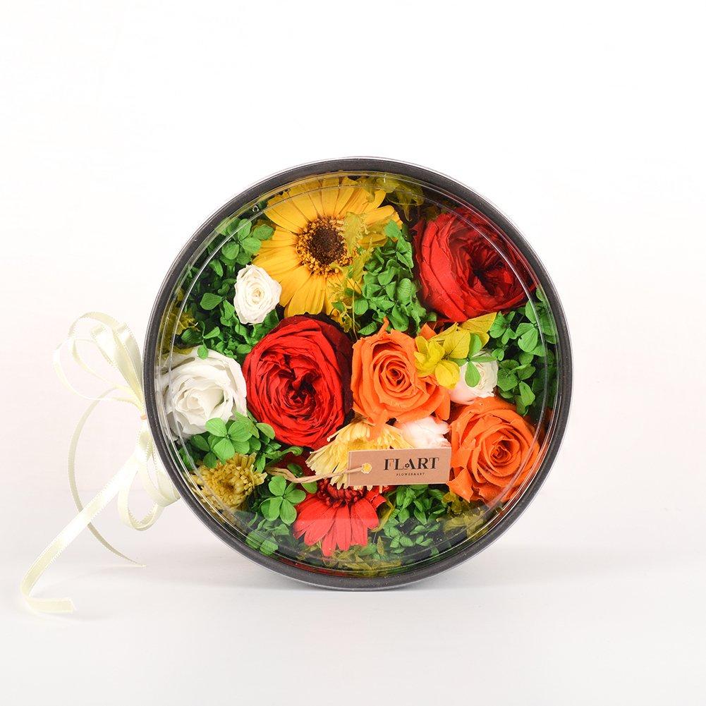 Vivid Haetボックス明るい色付きPreserved乾燥花美しくPackaged長持ち内部Decorations Presents B07B8GB19H
