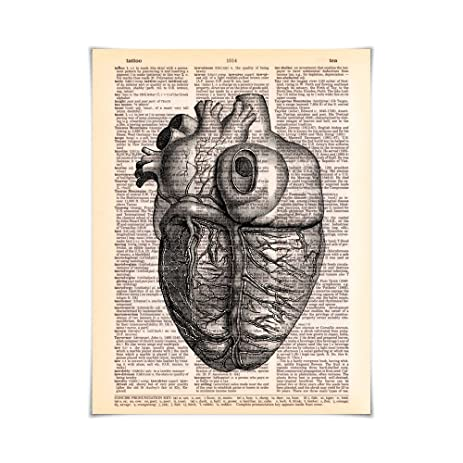 Amazon Human Anatomy Side View Of The Heart Printed On Vintage