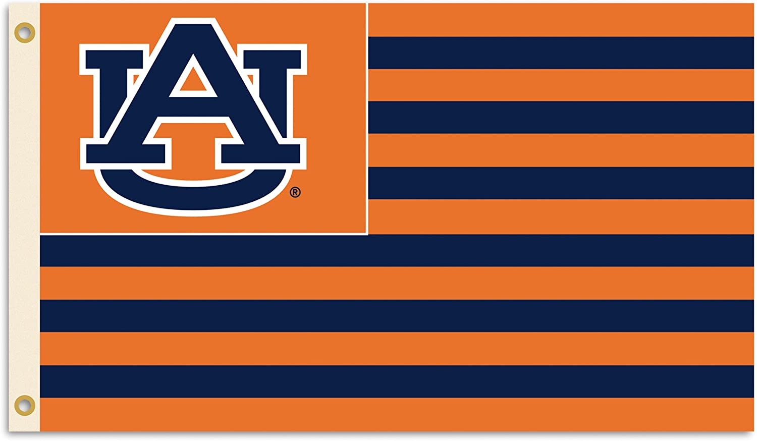 BSI NCAA 3-by-5 Foot Flag with Grommets