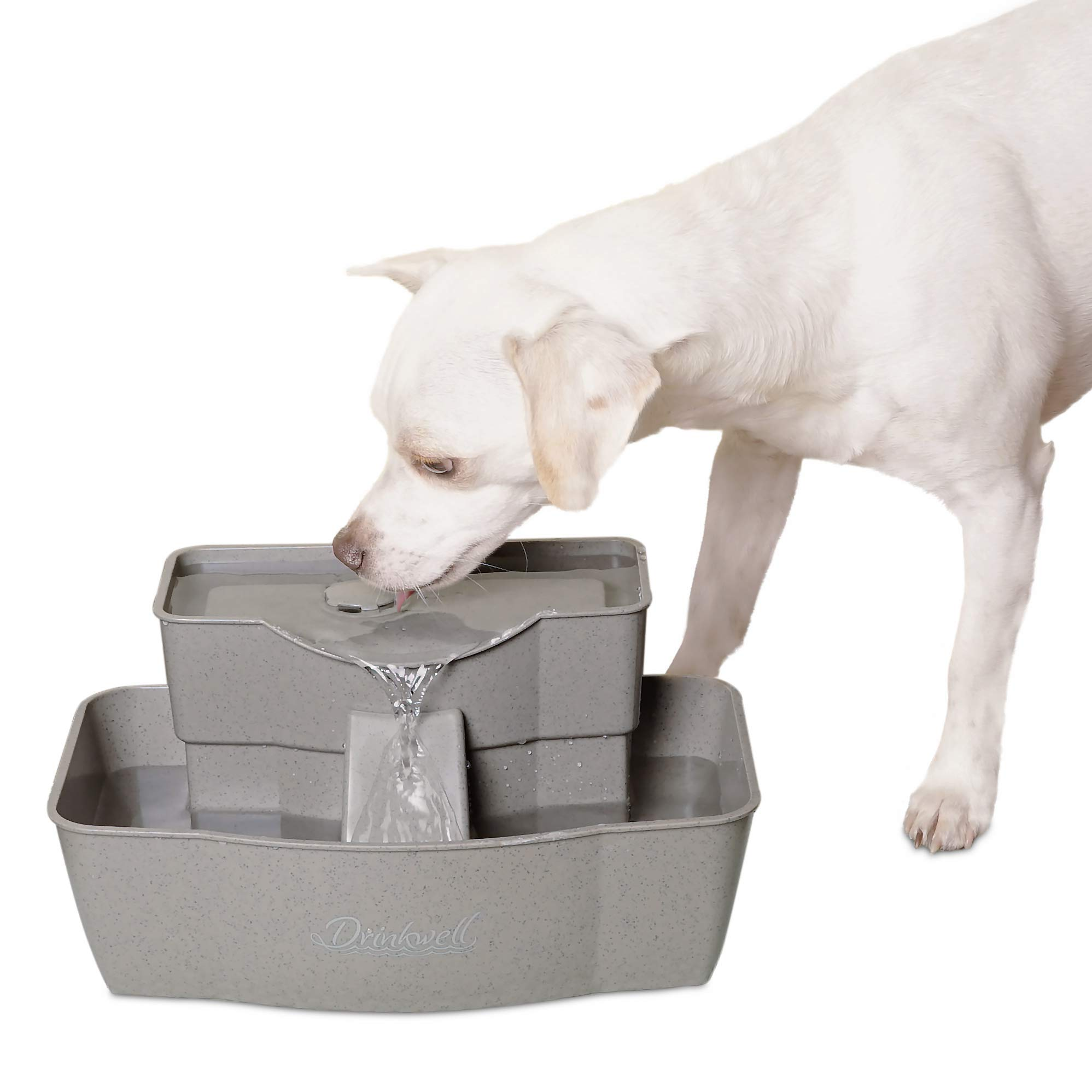 PetSafe Drinkwell Multi-Tier Dog and Cat Water Fountain, Automatic Drinking Fountain for Pets, 100 oz. Water Capacity - PWW00-13708 by PetSafe (Image #3)