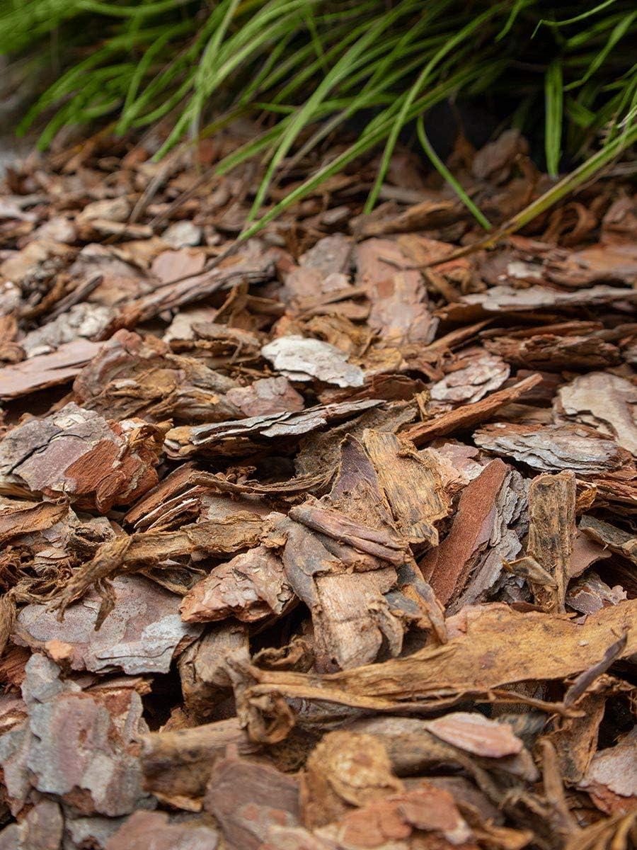 Amagard Corteza de Pino 25-60mm (100KG): Amazon.es: Jardín