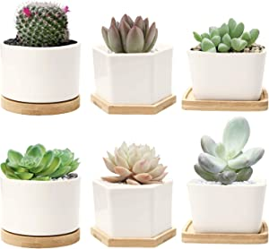 DeeCoo Set of 6 Small Succulent Pots, Ceramic Planter Pots, Mini Porcelain Planter with Drainage Hole, White Garden Pots with Bamboo Tray, Modern Decor for Home and Office (Plants NOT Included)